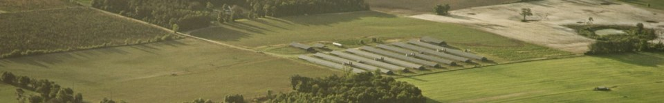 Aerial view of vast green fields with large chicken barns